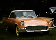 Gold Ford Prints - 1957 Thunderbird Print by Patricia Stalter