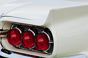 1960 Posters - 1960 Ford Thunderbird Tail Light Poster by Jill Reger