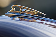 1960 Photos - 1960s Daimler Hood Ornament by Jill Reger