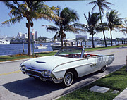 1963 Ford Art - 1963 Ford Thunderbird by Fpg