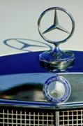 1965 Mercedes 220 Se Cabriolet Hood Ornament Print by Jill Reger