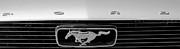 Mark Dodd - 1966 Mustang Logo BW