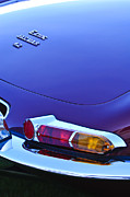 Jaguar E Type Posters - 1967 Jaguar E-Type 4.2 Liter Series 1 Roadster Taillight Poster by Jill Reger