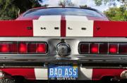 Bad Ass Metal Prints - 1968 Bad Ass Shelby Mustang Metal Print by David Lee Thompson