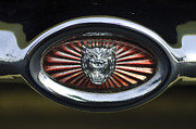 Jaguar E Type Photos - 1970 Jaguar XK Type-E Grille Emblem by Jill Reger