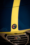 Alfa Romeo Photos - 1978 Alfa Romeo Spider by David Patterson
