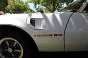 Sportscar Photos - 1979 Pontiac Trans Am . 5D16320 by Wingsdomain Art and Photography