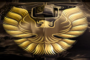 Dean Digital Art Framed Prints - 1979 Pontiac Trans Am  Framed Print by Gordon Dean II