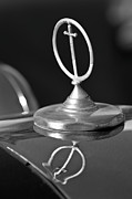 Mascot Photo Prints - 1984 Excalibur Roadster Hood Ornament 2 Print by Jill Reger