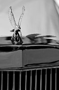 Car Abstracts Photo Posters - 1986 Zimmer Golden Spirit Hood Ornament 4 Poster by Jill Reger
