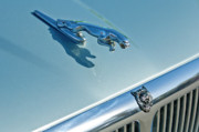 Historic Vehicle Photo Prints - 1995 Jaguar XJ6 Sedan Hood Ornament Print by Jill Reger