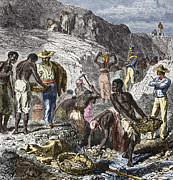 19th-century Diamond Mining, Brazil Print by Sheila Terry