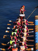 Dragonboat Posters - A Dragonboat Team at the Starting Line Poster by Yali Shi
