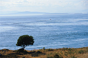Water Scenes Photos - A Scenic Water View From Atop A Hill by Raymond Gehman