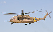 Sikorsky Photo Posters - A Sikorsky Ch-53 Yasur Of The Israeli Poster by Giovanni Colla