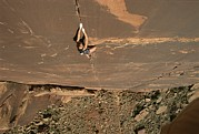 Climbing Posters - A Young Woman Climbing In Canyonlands Poster by Jimmy Chin