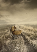 Missing Child Photo Prints - Abandoned antique baby carriage in field Print by Sandra Cunningham