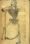 Persian Illustration Prints - Akbars Medicine, Persian Anatomical Print by Science Source