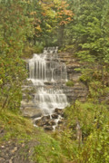 Autumn Photographs Posters - Alger Falls Poster by Michael Peychich