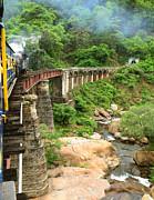JISS JOSEPH - an old rail bridge
