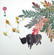 Fauna Originals - At ease by Ming Yeung