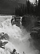 Drop Prints - Athabasca Falls Print by RicardMN Photography