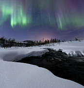 Winter Night Posters - Aurora Borealis Over Blafjellelva River Poster by Arild Heitmann