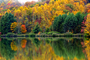 Ditch Framed Prints - Autumn Big Ditch Lake Framed Print by Thomas R Fletcher