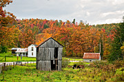 Shed Framed Prints - Autumn Farm Framed Print by Steve Harrington