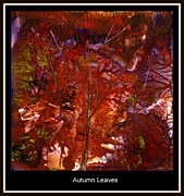 Lit Mixed Media Framed Prints - Autumn Leaves Framed Print by Tami Lowry