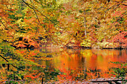 Kristin Elmquist Metal Prints - Autumn Reflections Metal Print by Kristin Elmquist