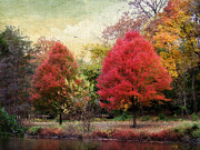 Autumn Landscape Digital Art Framed Prints - Autumns Canvas Framed Print by Jessica Jenney