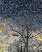 Bare Limbs Print by Misty Blankenship