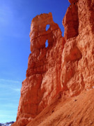 Utah National Parks Prints - Bryce Canyon National Park Print by Rona Black