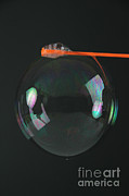 Soap Bubble Prints - Bubble Wand With Bubble Print by Photo Researchers