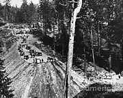 Cart Horse Photos - Building The Transcontinental Railroad by Omikron