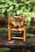 Bullfrog Print by Kenneth H Thomas and Photo Researchers