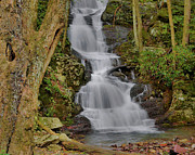 Stokes State Forest Prints - Buttermilk Falls Print by Stephen  Vecchiotti