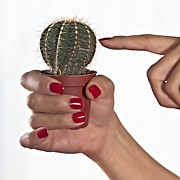 Finger Photo Prints - Cactus Print by Joana Kruse