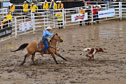 Rodeo Photos - Calf Roping at the Calgary Stampede by Louise Heusinkveld