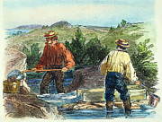 Gold Rush Posters - California Gold Rush Poster by Granger