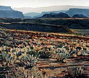 Southwestern Landscape Framed Prints - Canyonlands Framed Print by Donald Maier
