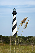 Cape Hatteras Lighthouse Posters - Cape Hatteras Lighthouse Poster by John Greim