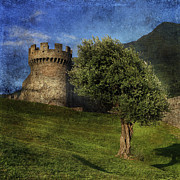 Green Walls Prints - Castle Print by Joana Kruse