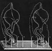 Cathode Ray Tubes Print by Science Source
