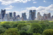 City Scape Digital Art Prints - Central Park South Print by Ariane Moshayedi