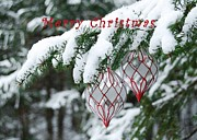 Christmas Greeting Photo Framed Prints - Christmas card 2194 Framed Print by Michael Peychich