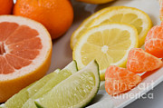 Tangerine Posters - Citrus Fruit Poster by Photo Researchers, Inc.