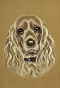 Pair Pastels Framed Prints - Cocker Spaniel Framed Print by Patricia Ivy