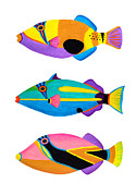 Triggerfish Painting Posters - Collection of trigger fishes Poster by Opas Chotiphantawanon